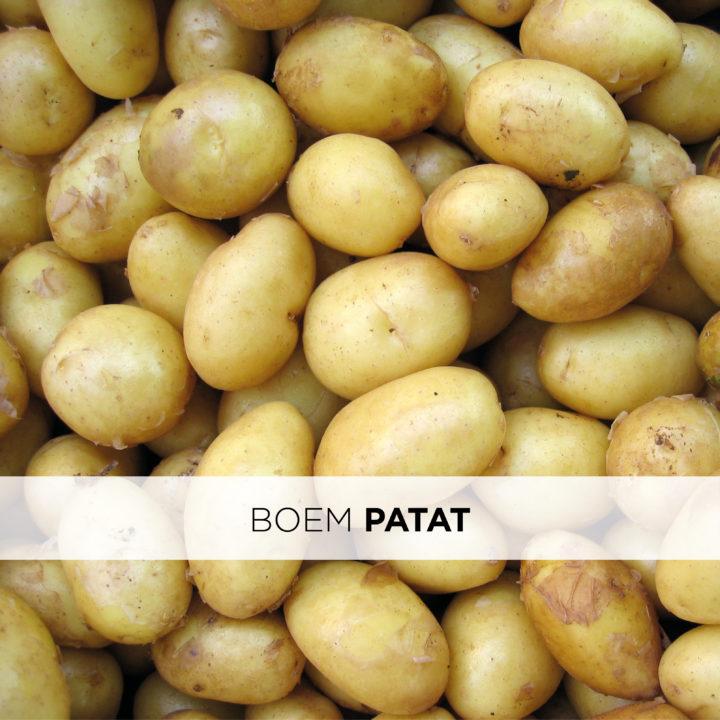 Boem Patat