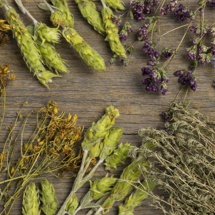 Flat lay natural medicinal spices herbs