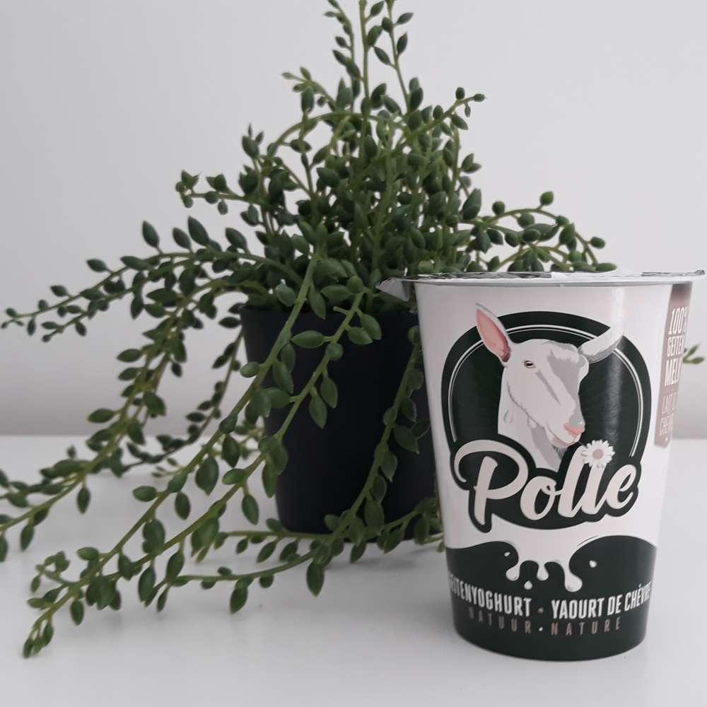Geitenyoghurt De Polle 2