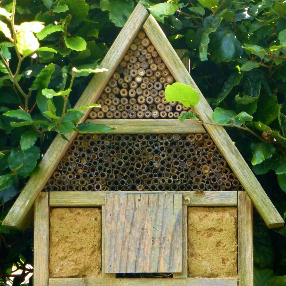 Insect hotel 883096 1920